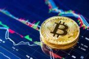 Чего ждать от биткоина и на какие альткоины обратить внимание?