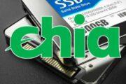 PNY сокращает ресурс SSD почти на 80%. Виноваты майнеры Chia