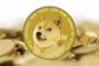 Что думают эксперты по поводу возрождения Dogecoin Foundation?